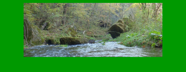 Waterloo Creek Watershed Coordinator opening closes April 23, 2014.