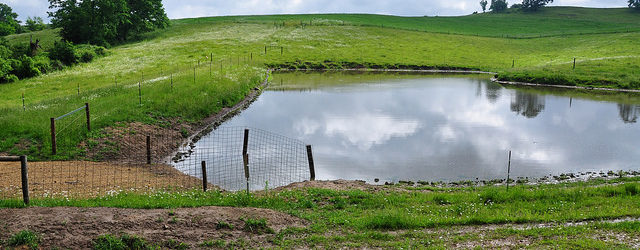 Allamakee County livestock producer, Ryan Collins, was featured in an article on the Iowa NRCS website. EQIP funds were used to help Collins set up a rotational grazing system including […]