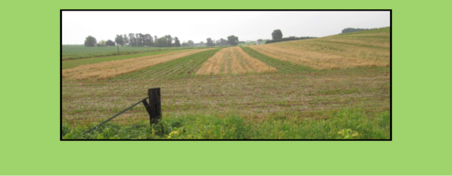 When Waukon farmer Mark Stock forgot to turn half of his cover crop seeding drill back on last fall while starting a new row, he inadvertently began an experiment that […]