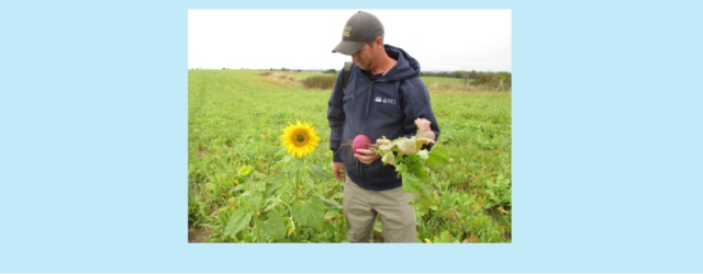 Adam Kramer, owner and operator of Black Sand Granary out of Prairie du Chien, farms ground just west of Waukon. He has been working for the past few years to […]